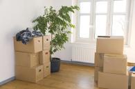 Zum Bereich Immobilien - Service